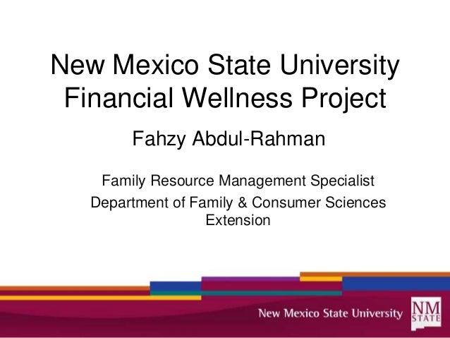 Financial Wellness Project