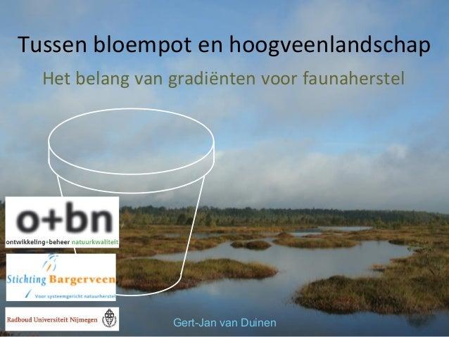 Tussen bloempot en hoogveenlandschap Het belang van gradiënten voor faunaherstel  Gert-Jan van Duinen
