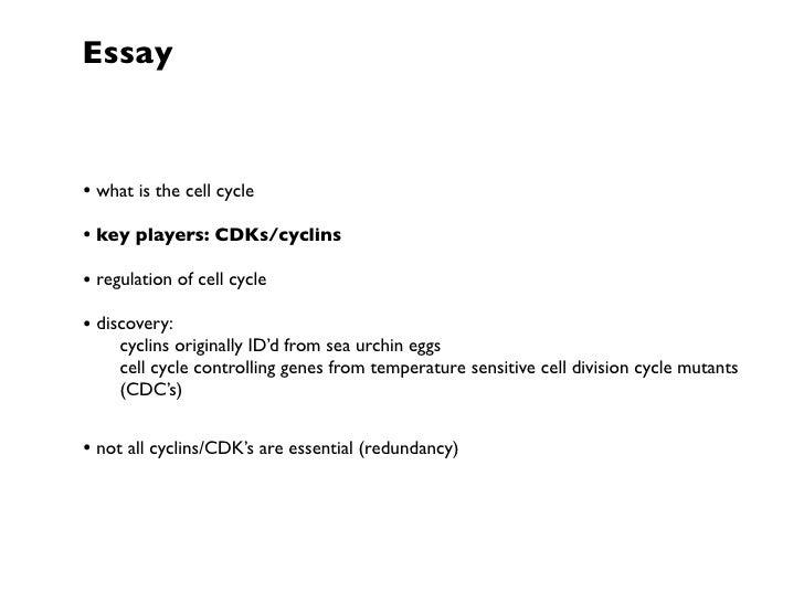 Essay On Cells