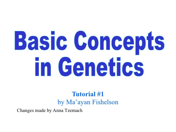 Tutorial #1 by Ma'ayan Fishelson Changes made by Anna Tzemach Basic Concepts  in Genetics