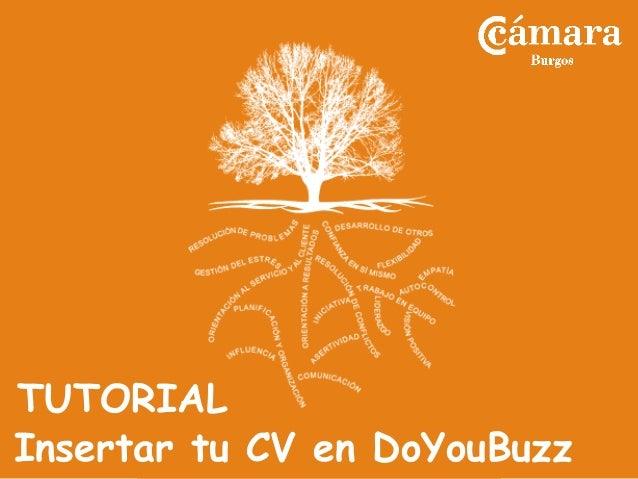 Insertar tu CV en DoYouBuzz TUTORIAL