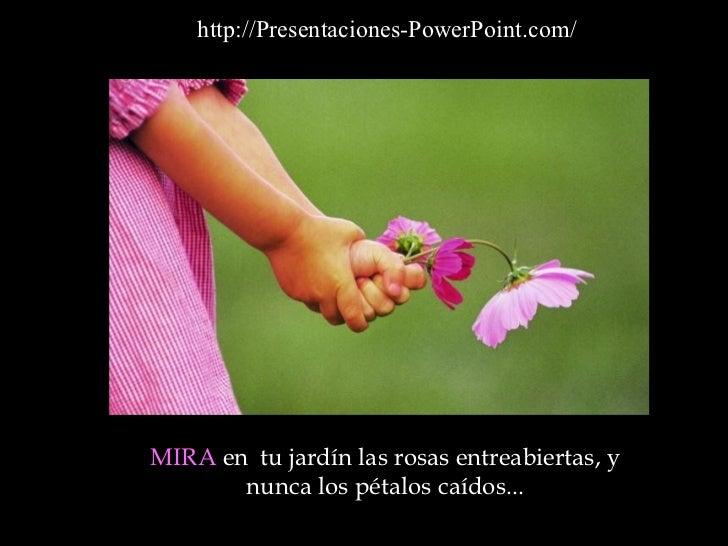 MIRA  en  tu jardín las rosas entreabiertas, y nunca los pétalos caídos ... http://Presentaciones-PowerPoint.com/