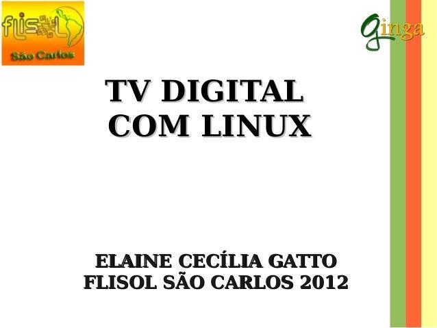TV Digital com Linux