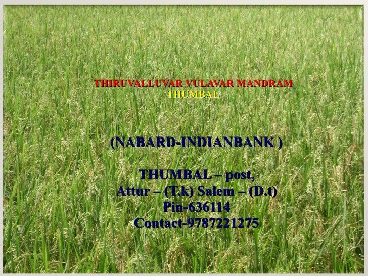 THIRUVALLUVAR VULAVAR MANDRAM THUMBAL (NABARD-INDIANBANK ) THUMBAL – post, Attur – (T.k) Salem – (D.t) Pin-636114 Contact-...