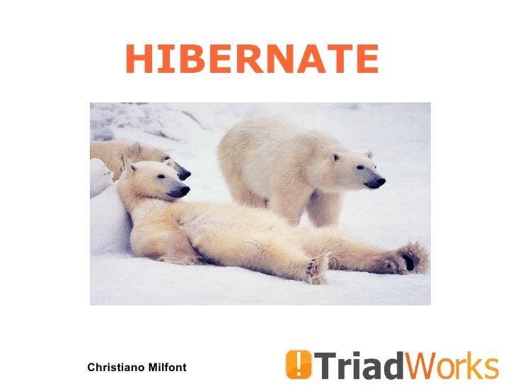 Course Hibernate 2008