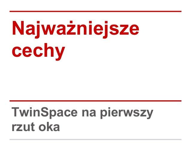 Najważniejsze cechy TwinSpace na pierwszy rzut oka