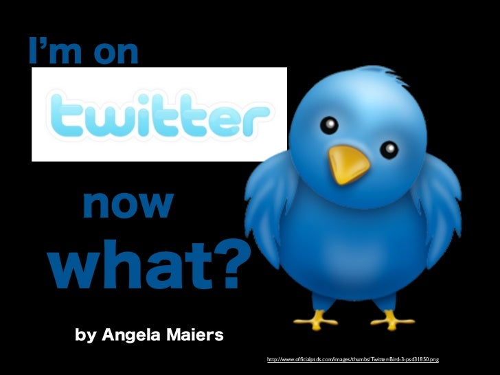 I'm on Twitter- Now What?