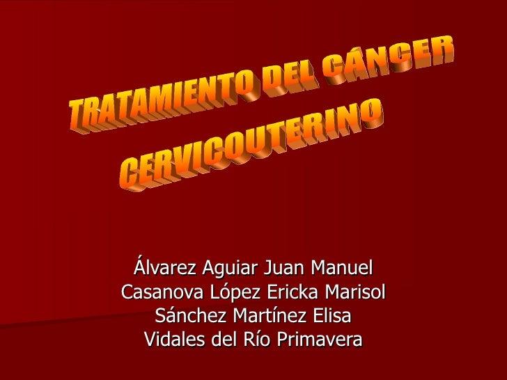 Álvarez Aguiar Juan Manuel Casanova López Ericka Marisol Sánchez Martínez Elisa Vidales del Río Primavera TRATAMIENTO DEL ...