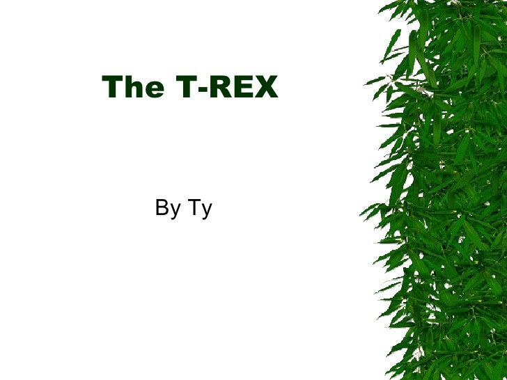 The T-REX   By Ty