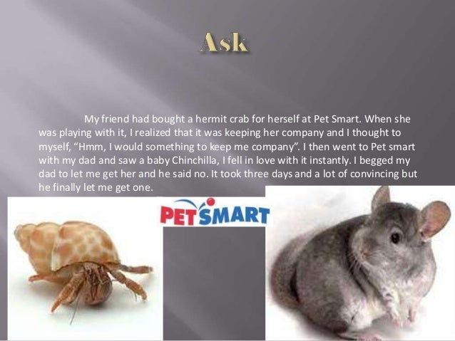 My friend had bought a hermit crab for herself at Pet Smart. When shewas playing with it, I realized that it was keeping h...
