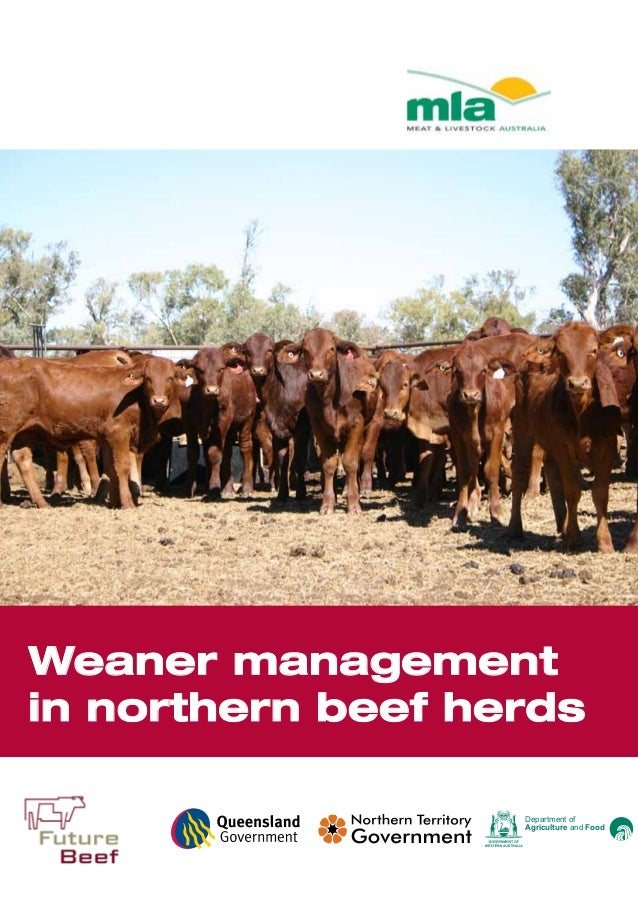www.futurebeef.com.au Department of Agriculture and Food Level 1, 165 Walker Street North Sydney NSW 2060 Tel: +61 2 9463 ...