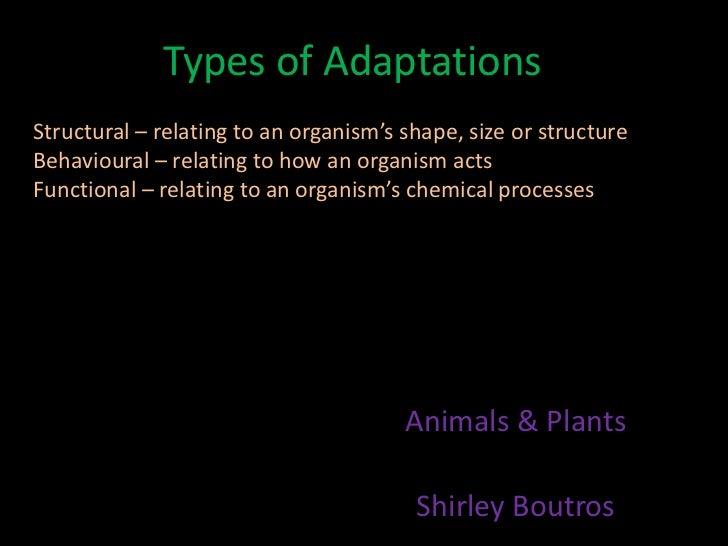 Types of adaptations - animals & plants