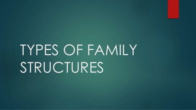 the different types of families from the single parent family perspective Sociological perspectives of family and  asian families other types of family structures which are more common in britain today are the one parent families,.