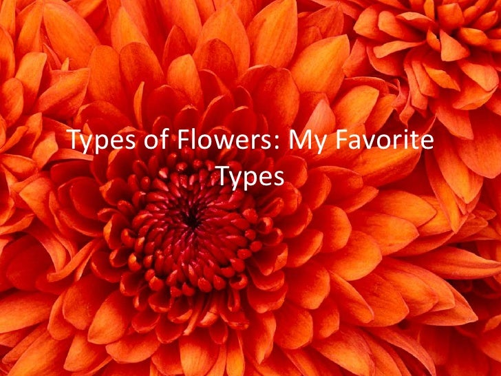 types of flowers my favorite types