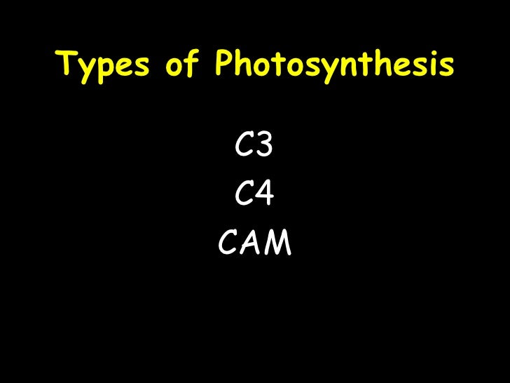 Typesof photosynthesis