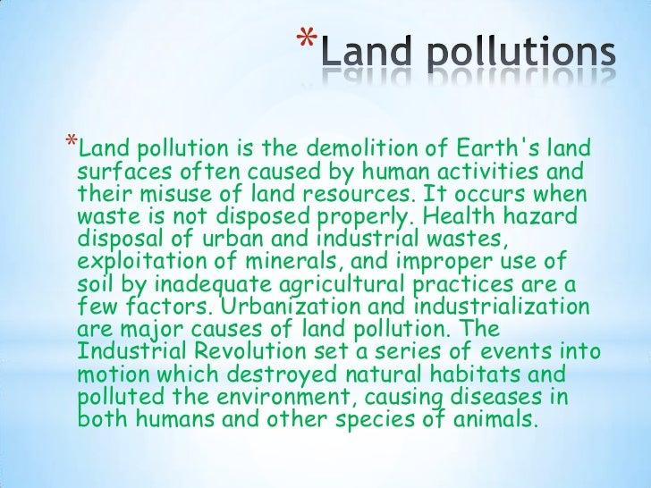 natural habitat essay