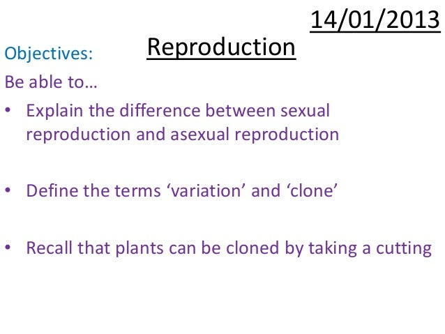 Difference between asexual and sexual reproduction photo 83