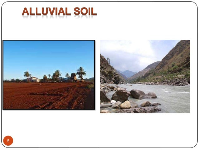 Types of soil for What is rich soil called