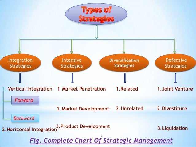 Types of essay development strategies