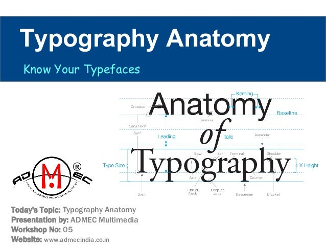 Typography Anatomy By Admec Multimedia Institute