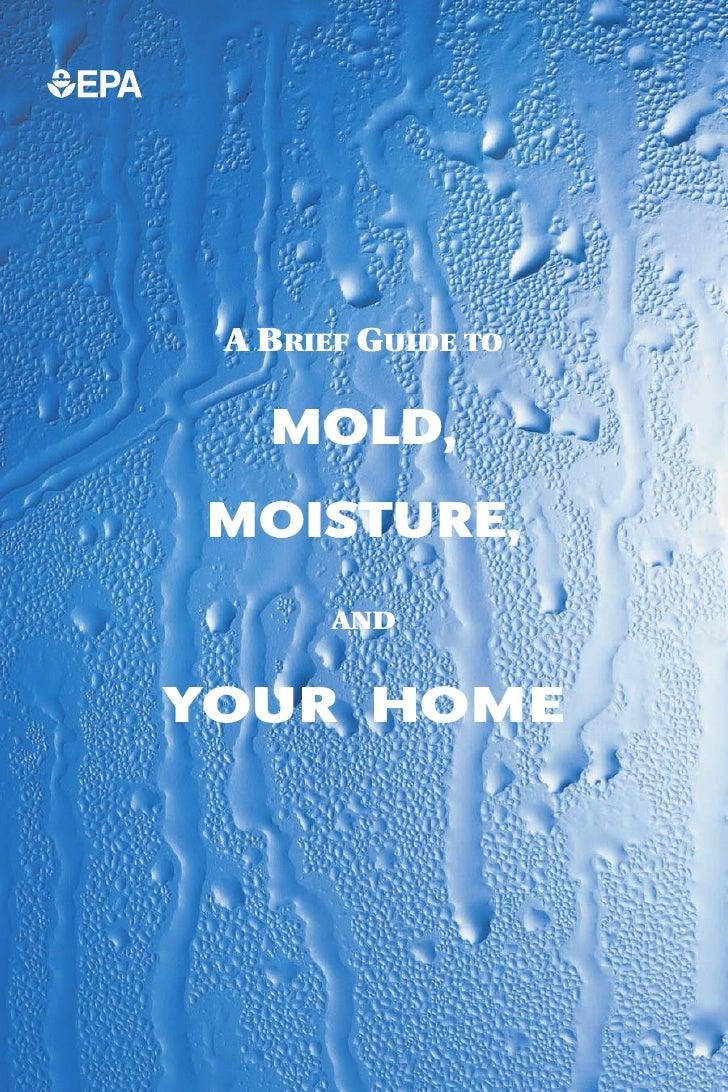 EPA Mold Guide