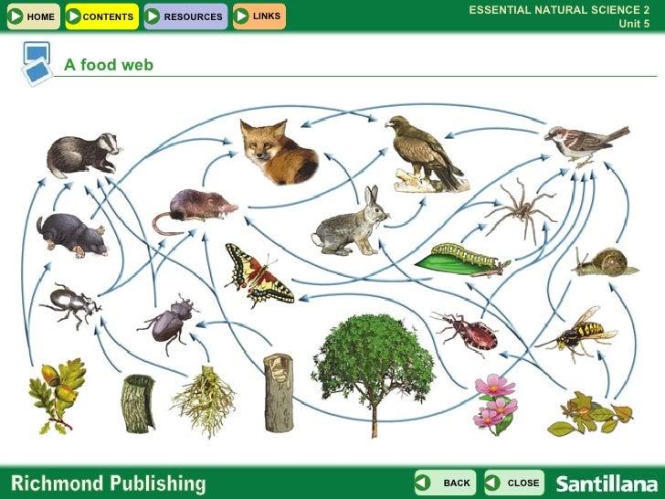 Ecosphere definition