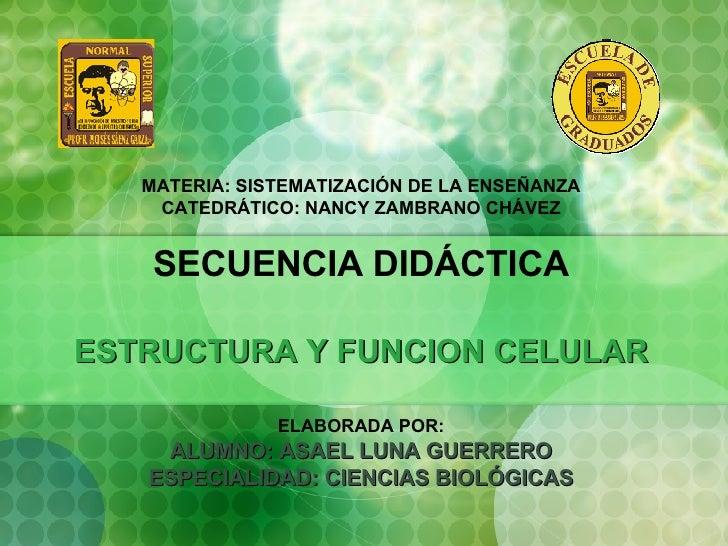 U3-T2-Asael SECUENCIA DIDÁCTICA-ESTRUCTURA Y FUNCIÓN CELULAR
