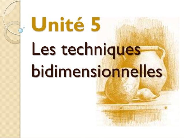 Unité 5Les techniquesbidimensionnelles