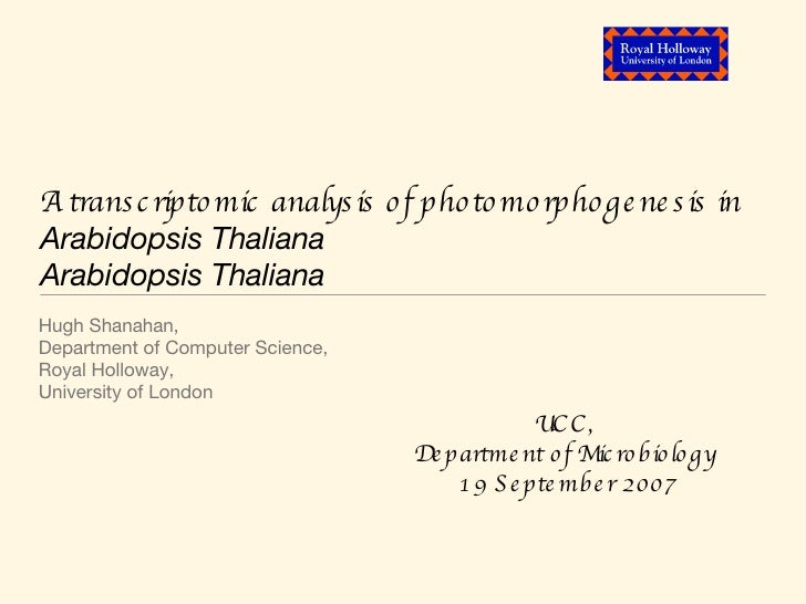 Photomorphogenesis talk