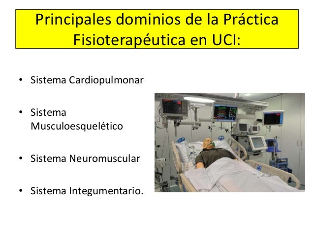 Principales dominios de la Práctica Fisioterapéutica en UCI: • Sistema Cardiopulmonar • Sistema Musculoesquelético • Siste...