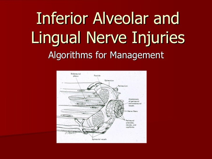 Inferior Alveolar and Lingual Nerve Injuries Algorithms for Management