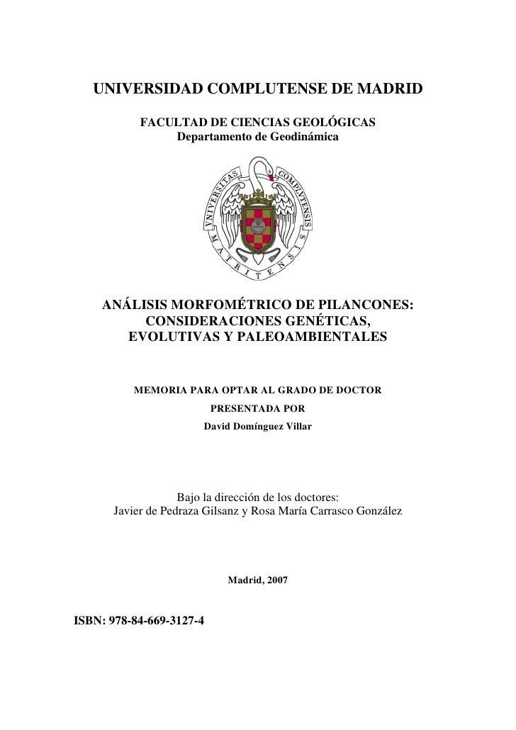 ANÁLISIS MORFOMÉTRICO DE PILANCONES: CONSIDERACIONES GENÉTICAS,  EVOLUTIVAS Y PALEOAMBIENTALES