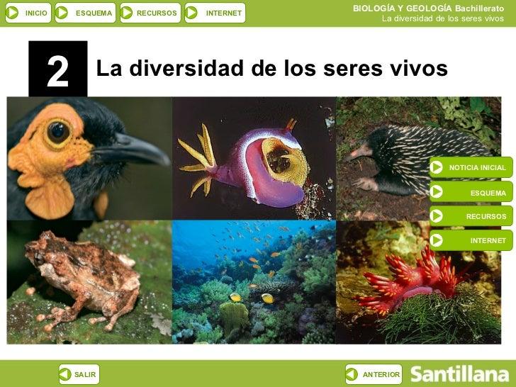 2 La diversidad de los seres vivos NOTICIA INICIAL ESQUEMA RECURSOS INTERNET