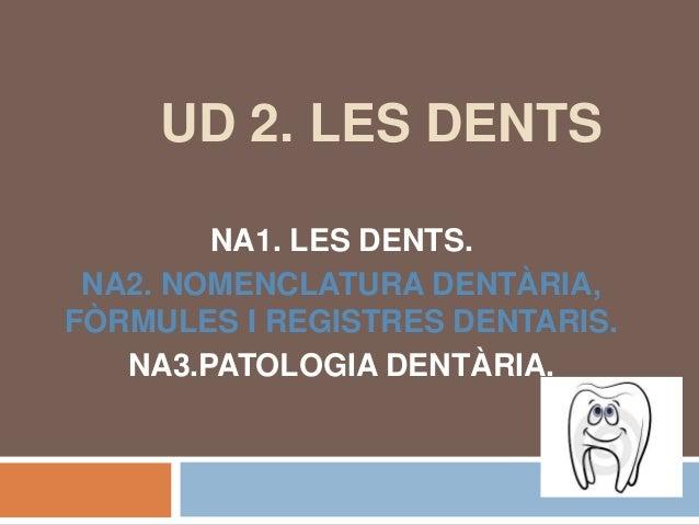 UD 2. LES DENTS  NA1. LES DENTS.  NA2. NOMENCLATURA DENTÀRIA,  FÒRMULES I REGISTRES DENTARIS.  NA3.PATOLOGIA DENTÀRIA.