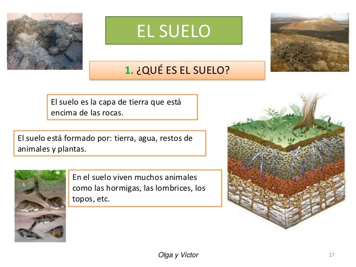 Unidad 4 las rocas los minerales y el suelo for Como esta constituido el suelo
