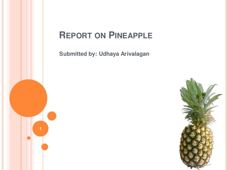 Report on Pineapple<br />Submitted by: Udhaya Arivalagan<br />1<br />
