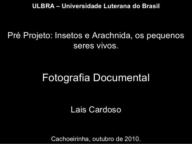 ULBRA – Universidade Luterana do Brasil Pré Projeto: Insetos e Arachnida, os pequenos seres vivos. Fotografia Documental L...