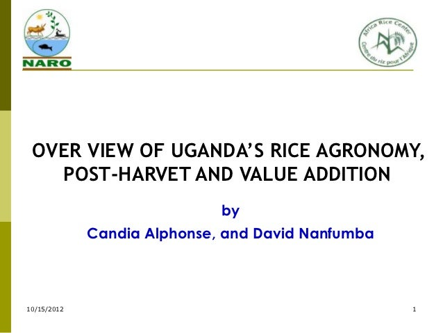Uganda presentation agronomy and ph mechan bennin  2011