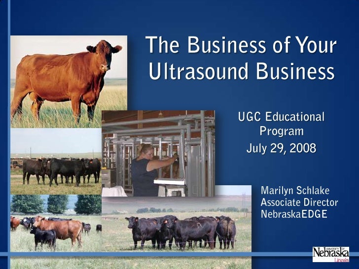 Ultrasound Guidelines Council Business Presentation
