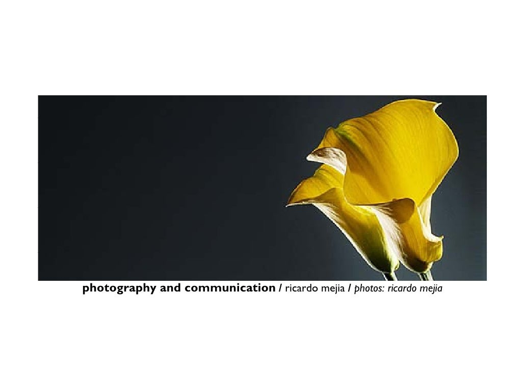 photography and communication / ricardo mejia / photos: ricardo mejia