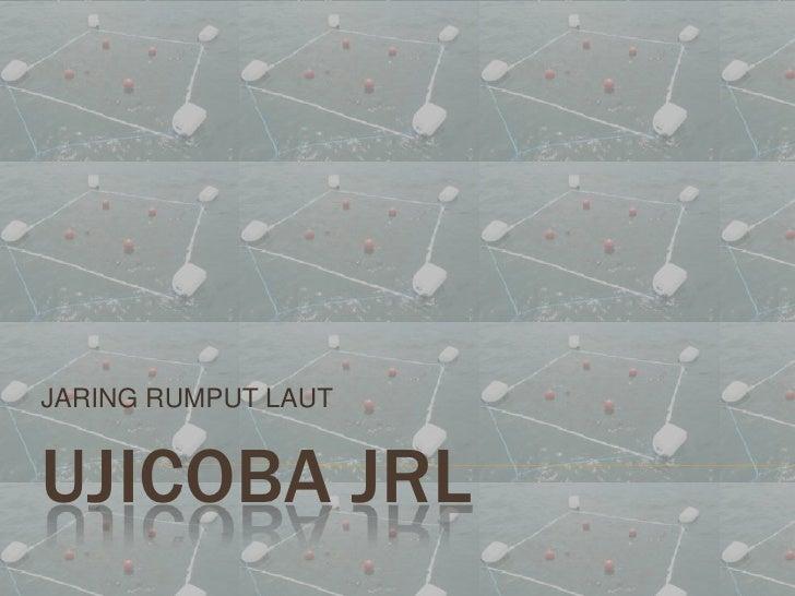 JARING RUMPUT LAUTUJICOBA JRL