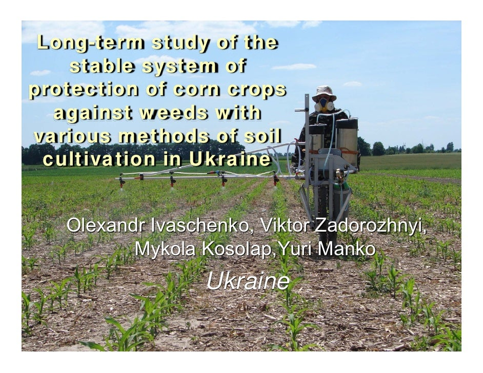 Long-term study of the    stable system ofprotection of corn crops  against weeds withvarious methods of soil cultivation ...