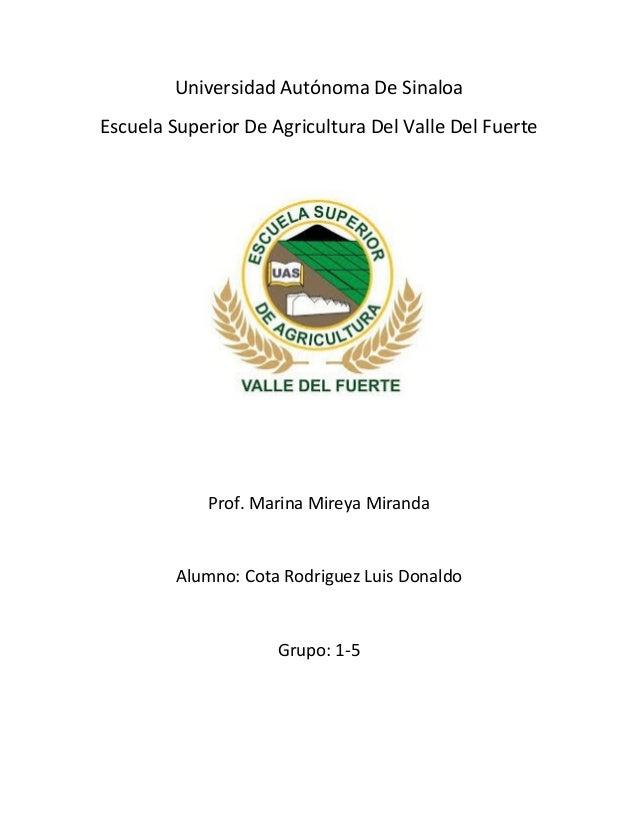 Universidad Autónoma De Sinaloa Escuela Superior De Agricultura Del Valle Del Fuerte  Prof. Marina Mireya Miranda  Alumno:...