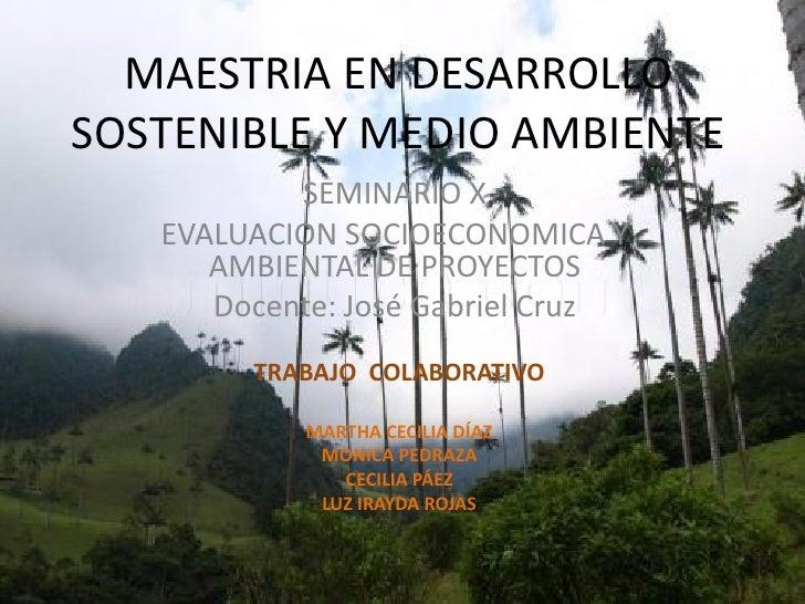 MAESTRIA EN DESARROLLO SOSTENIBLE Y MEDIO AMBIENTE            SEMINARIO X    EVALUACION SOCIOECONOMICA Y       AMBIENTAL D...