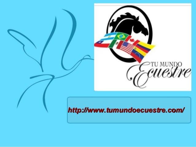 http://www.tumundoecuestre.com/http://www.tumundoecuestre.com/