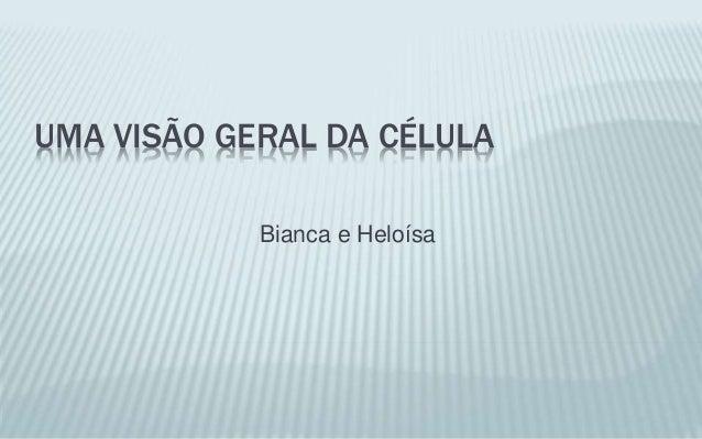 UMA VISÃO GERAL DA CÉLULA Bianca e Heloísa