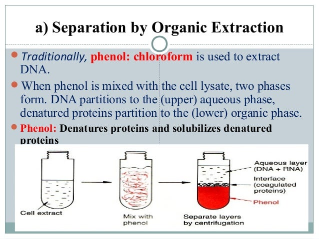 extraction of dna from calf or Dna adsorption is the initial stage of gene therapy for drug delivery systems and solid phase extraction methods of dna purification high pore volume and high adsorption capacity are simple requirements not only for producing 'smart' drug delivery systems but also the development of purification kits.