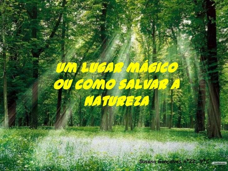 Um lugar mágicoou como salvar a    natureza          Susana Gonçalves nº22, 9ºC