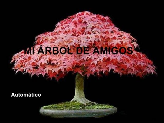 MI ÁRBOL DE AMIGOS  Automático