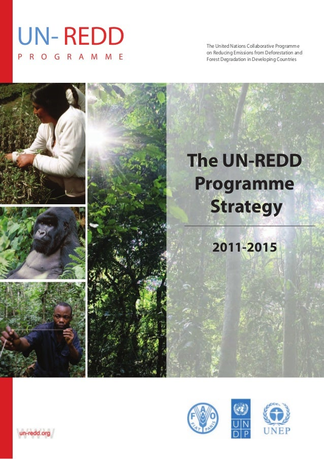 UN- REDD P R O G R A M M E  The United Nations Collaborative Programme Programme The United Nations Collaborative on Reduc...